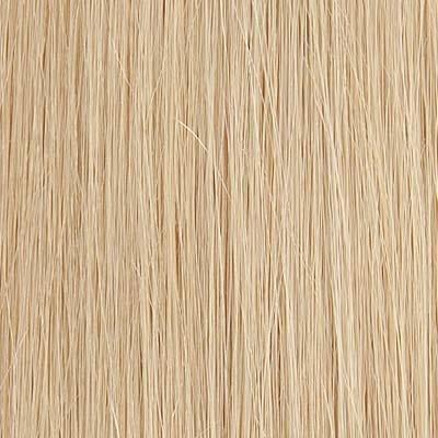 Golden Light Blond (16)